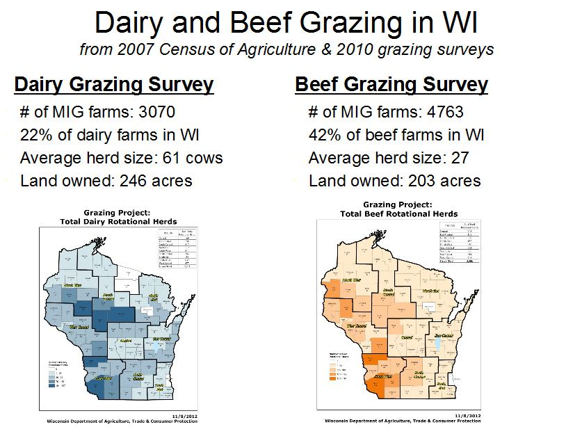 Dairy grazing in Wisconsin